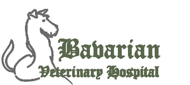 Bavarian Veterinary Hospital, PC