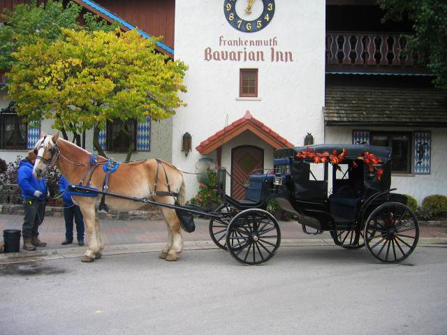 The New Frankenmuth Carriage Company